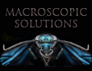 Daniel Saftner of Macroscopic Solutions Profile Picture