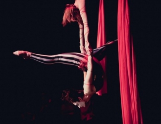 Cirque Indy Profile Picture